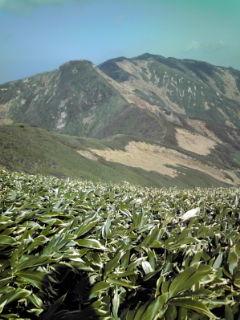 大石山です